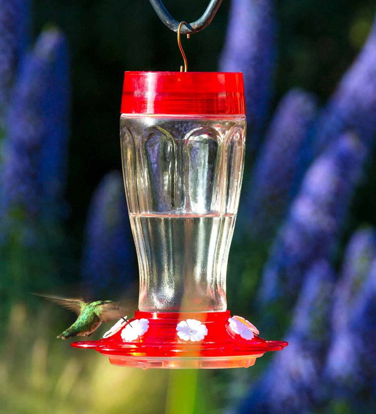 Jumbo 40-Ounce Hanging Hummingbird Feeder