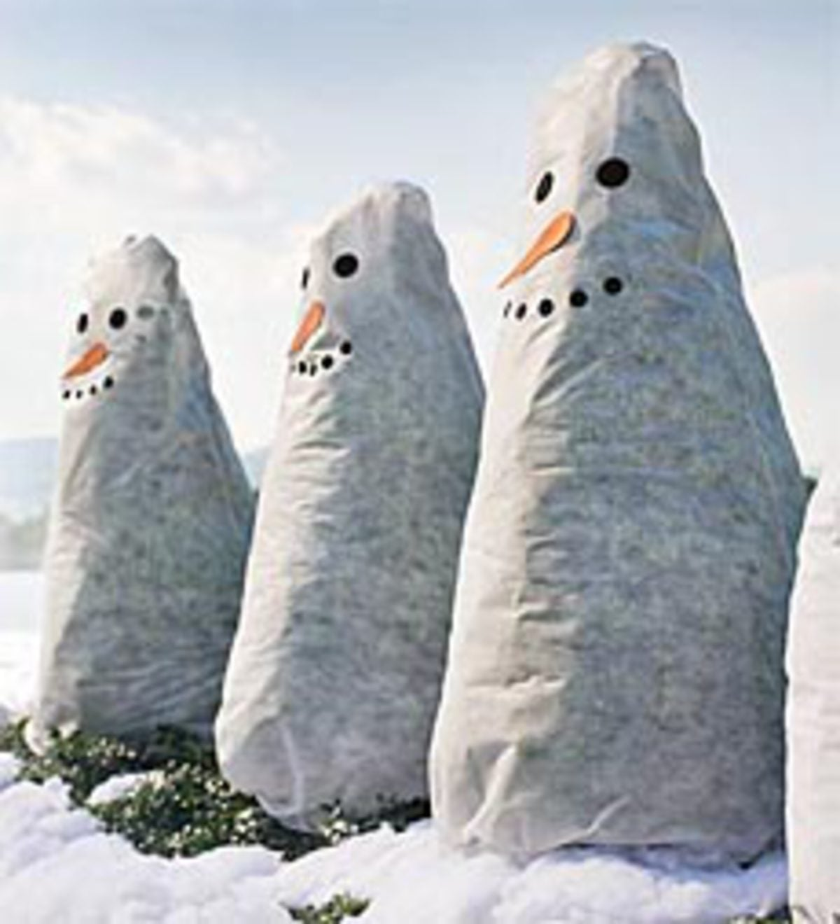 Winter Friends Frost Protek Polyester Fleece Plant Cover with Stick-On Facial Expressions