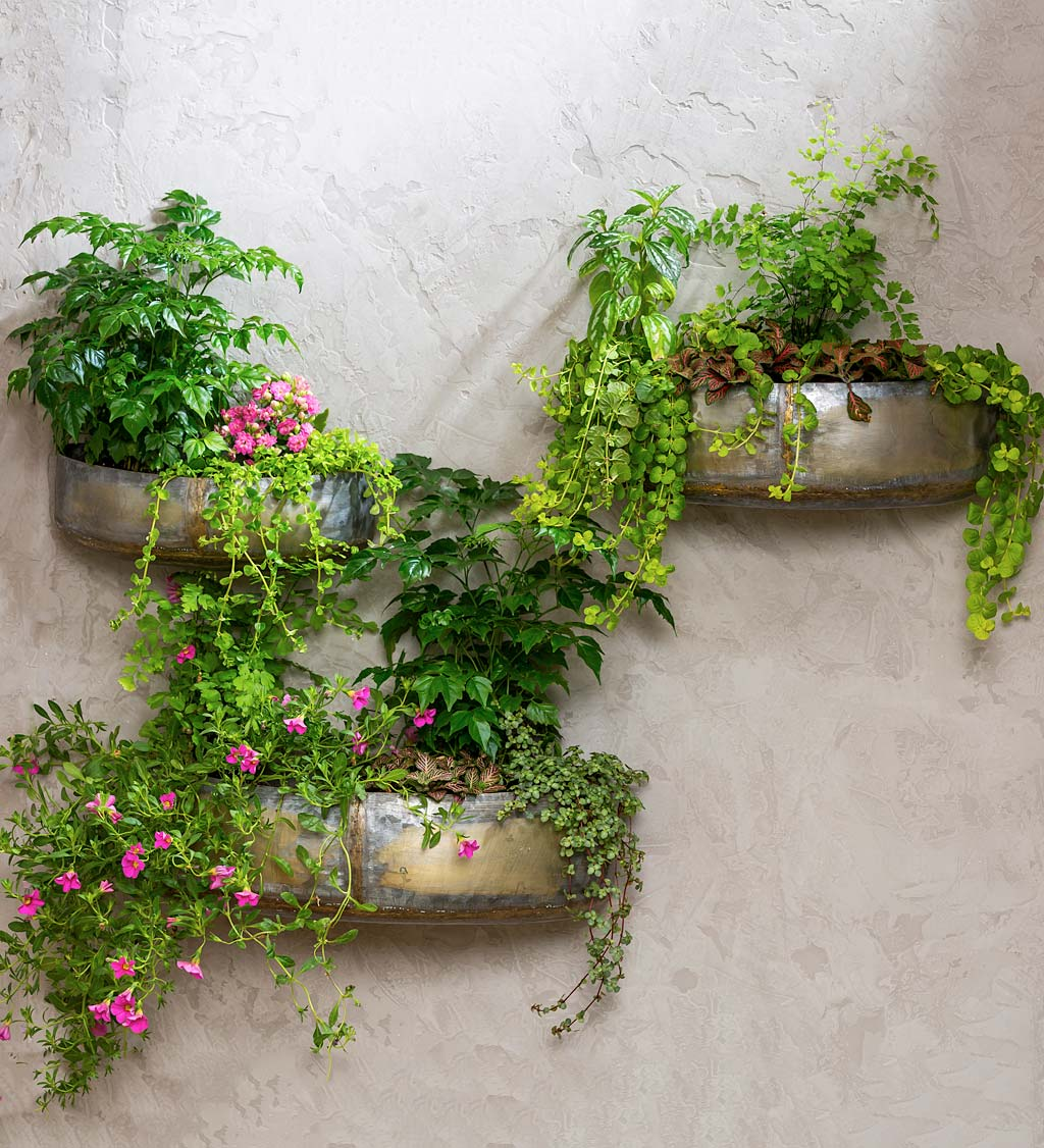 Rustic Metal Wall Planters, Set of 3