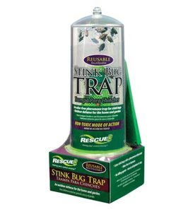 RESCUE!® American-Made Odor-Free Reusable Indoor/Outdoor Stink Bug Trap 7-Week Refills