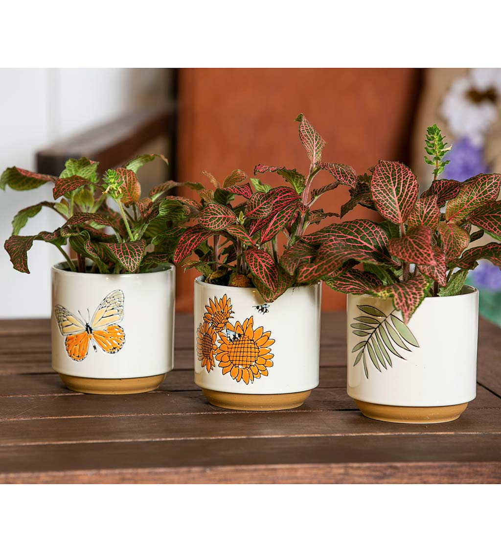 Harvest Ceramic Cachepots, Set of 3
