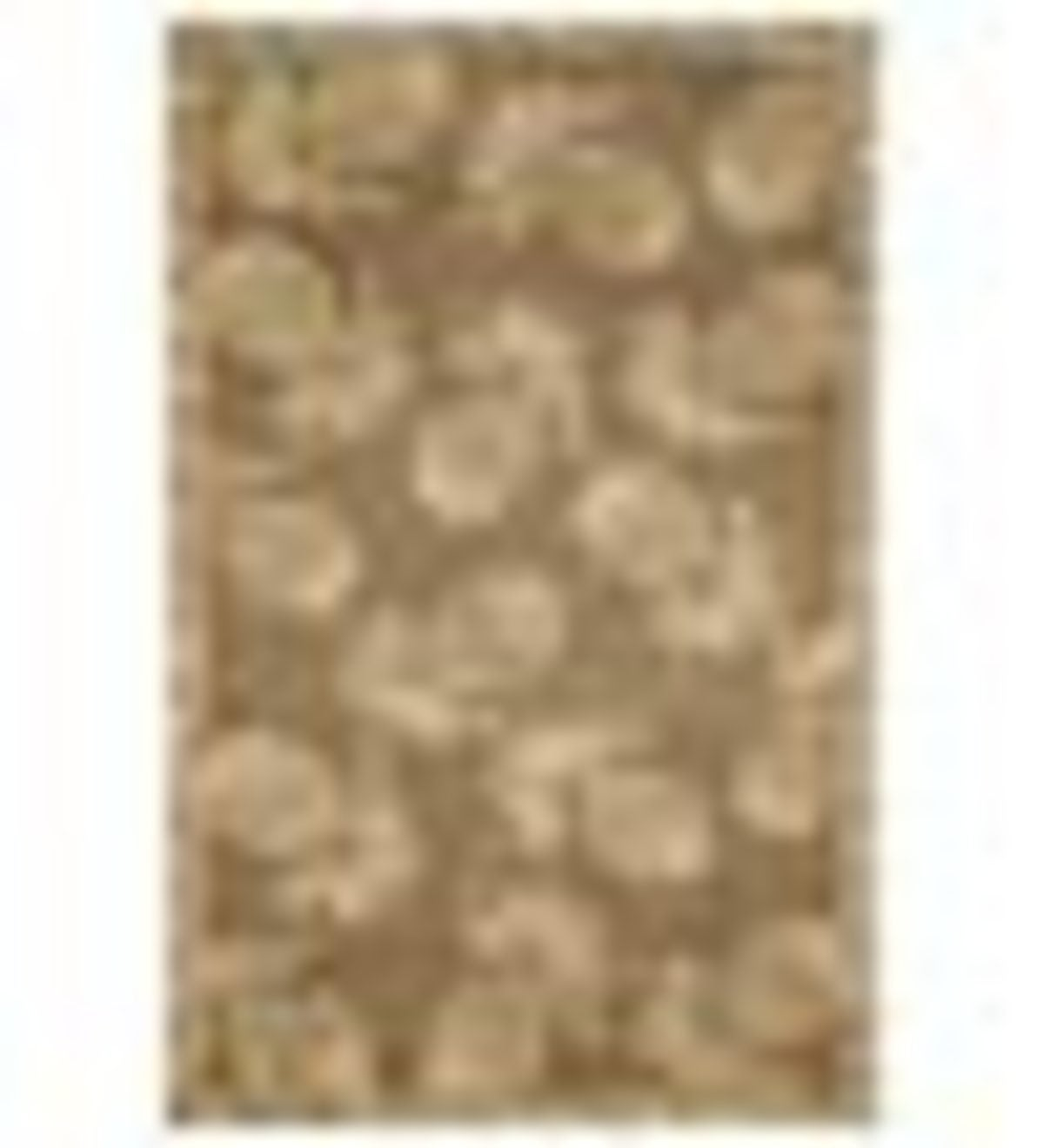 "42""x 66""Polypropylene Pineapple Indoor Outdoor Rug - Brown"