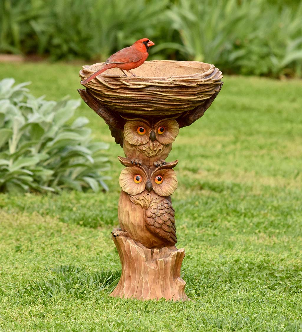 Carved Resin Owls Birdbath Garden Accent