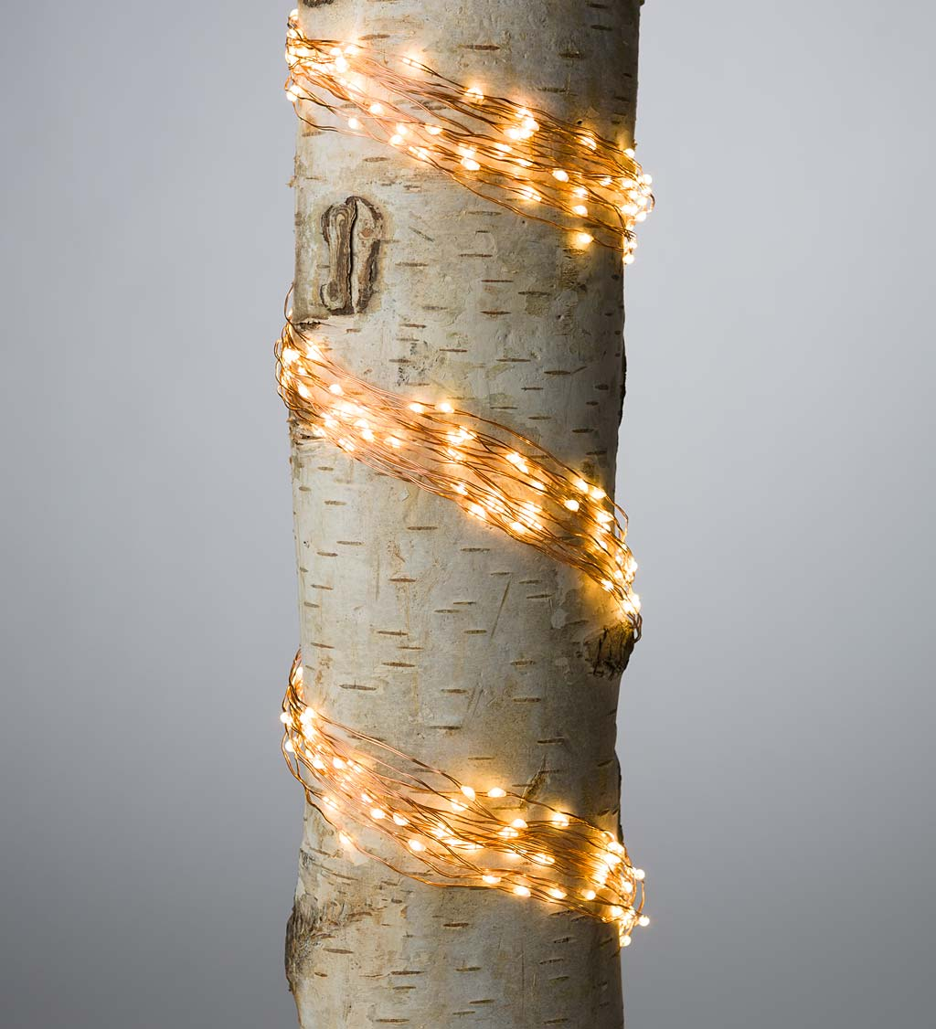 "Electric Bunch Lights, 640 Warm White LEDs on Bendable Wire, 6'2""L"