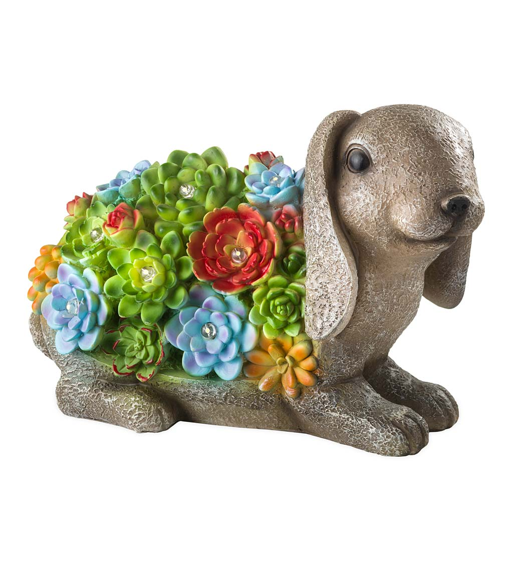 Solar Lighted Succulent Resin Animal Garden Statue swatch image