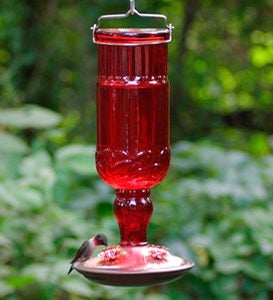 Antique Bottle Hummingbird Feeder - Clear