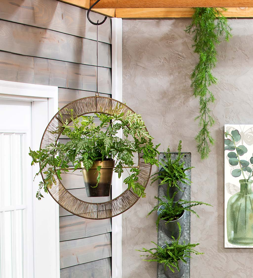 Metal Halo Hanging Planter with Pot