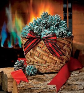 Color-Changing Fireplace Color Cones, 1 lb. in Gift Basket