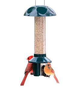 PestOff Sunflower Mixed Seed Pest Proof Bird Feeder
