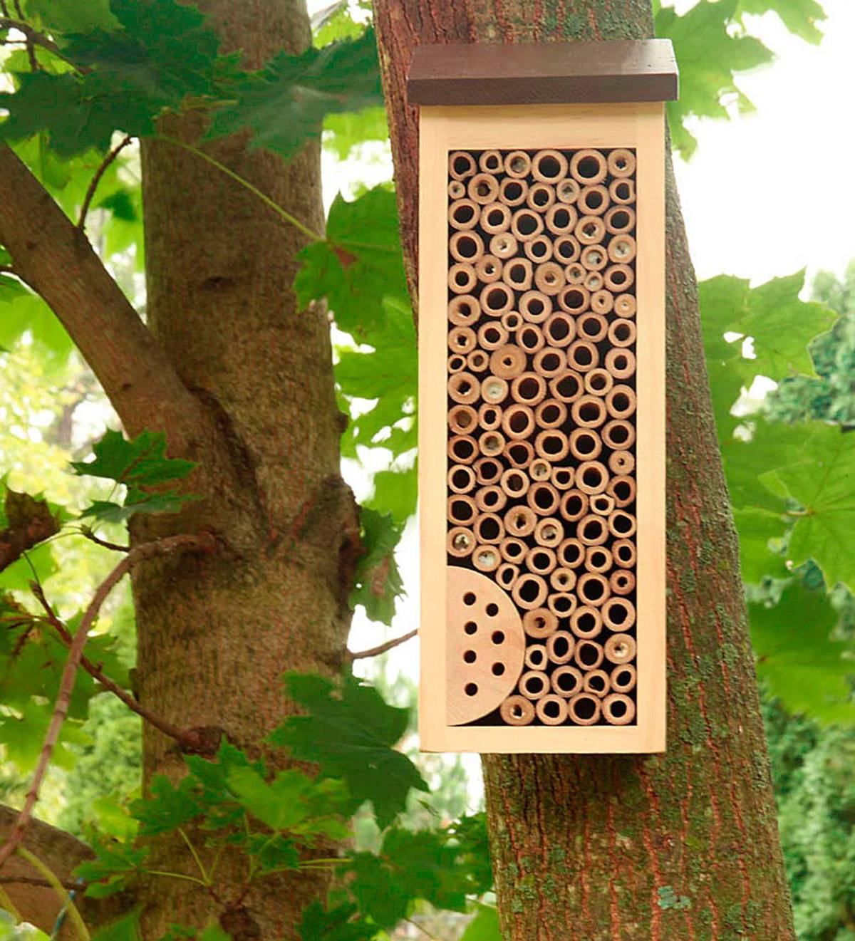 Wood And Bamboo High Rise Bee Habitat