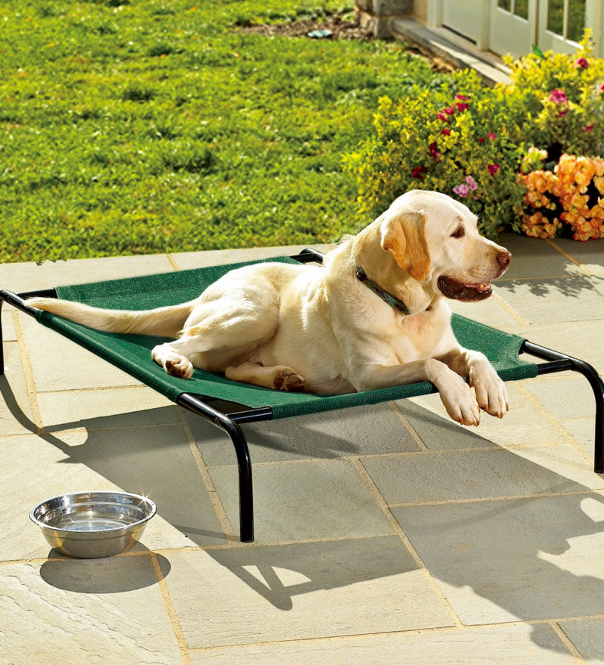 Weather-Resistant Raised Mesh Pet Bed And Replacement Mesh Covers