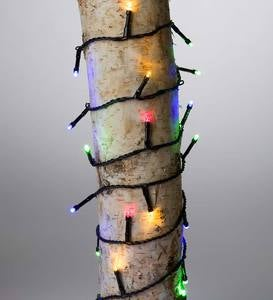 "Multifunction Twinkle String Lights, 368 LEDs on Black Wire, Battery Operated, 81'2""L - Multi"