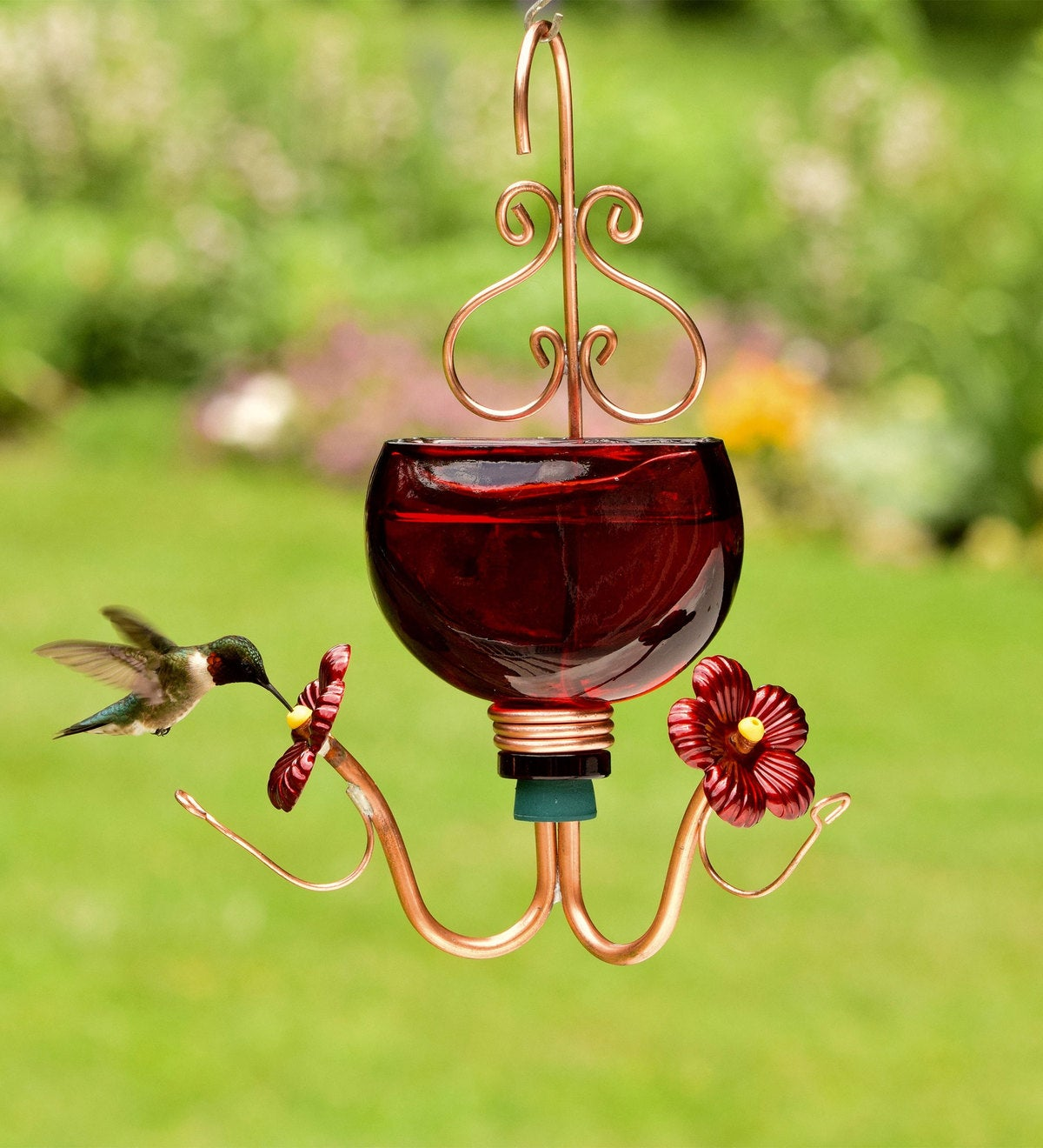 Harmony Red Hummingbird Feeder   Hummingbird Feeders   Birds and ...