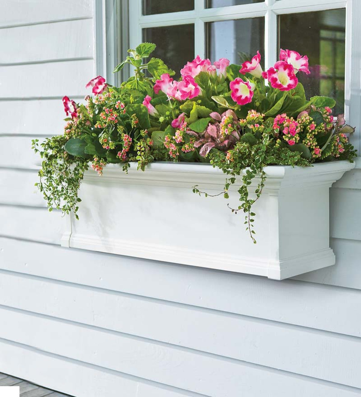 Yorkshire Self-Watering Window Box, 5'L
