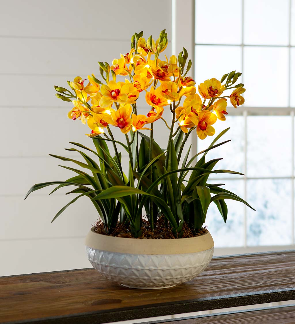 Lighted Faux Yellow Cymbidium Orchid Arrangement with Timer