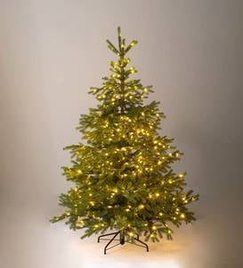 Pre-Lit Arlberg Fir Christmas Tree with Eight Light Functions