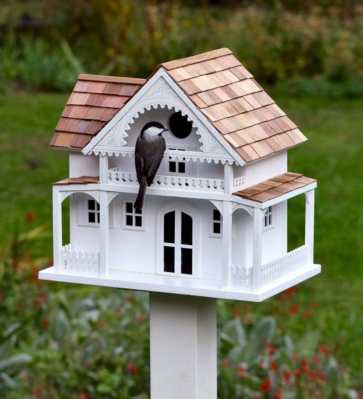 Shelter Island Birdhouse And Pole Birds And Nature