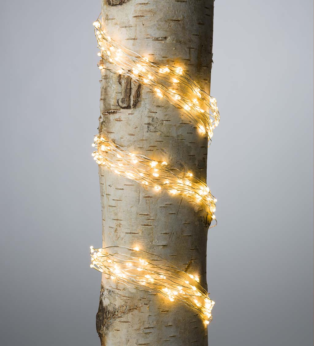 "Electric Bunch Lights, 320 Warm White LEDs on Bendable Wire, 3'2""L swatch image"
