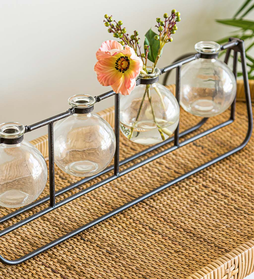 Clear Glass Bud Vases with Metal Rack