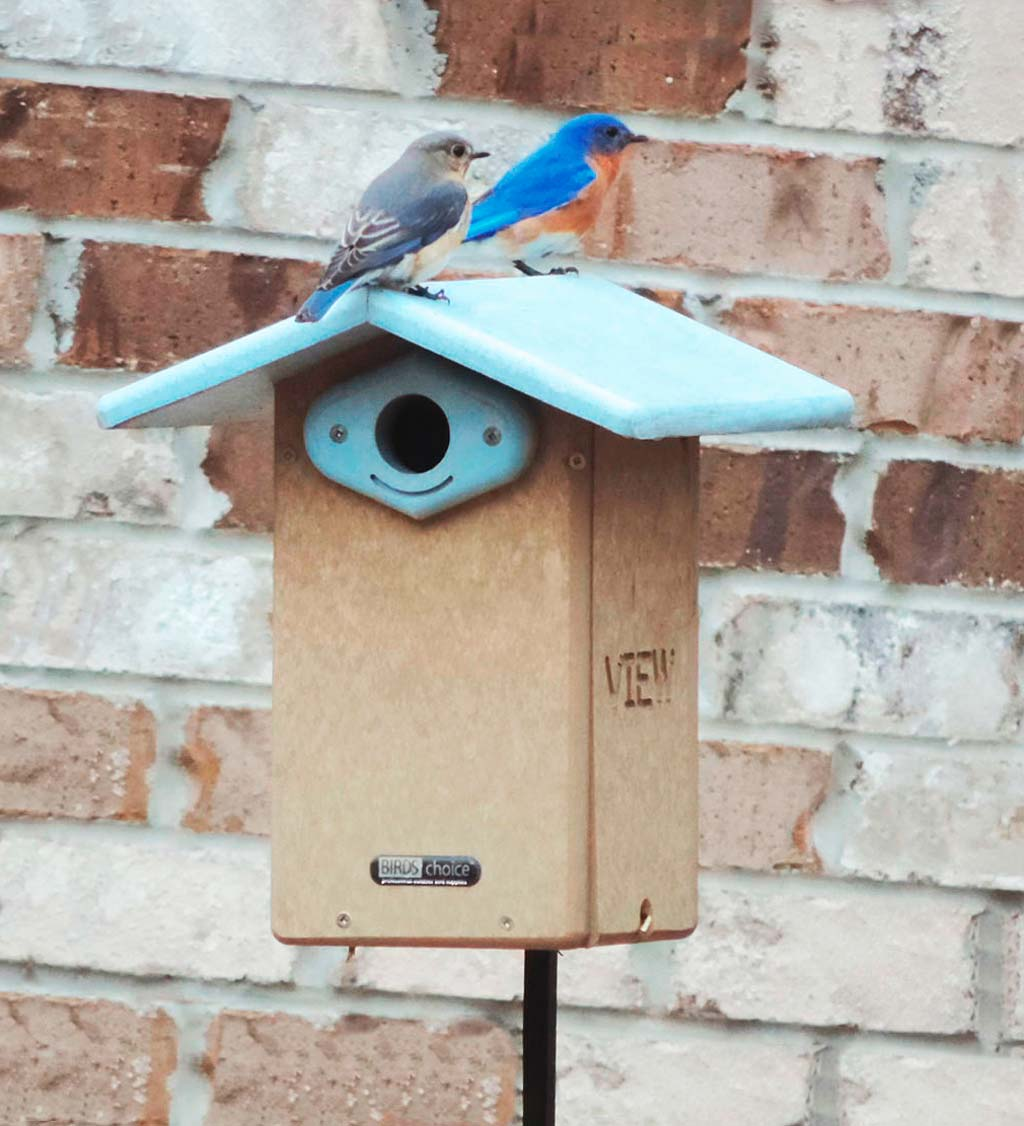 Recycled Poly-Lumber Ultimate Bluebird House