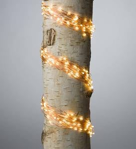 "Firefly Bunch Lights, 320 Warm White LEDs on Bendable Wires, Electric, 3'2""L"