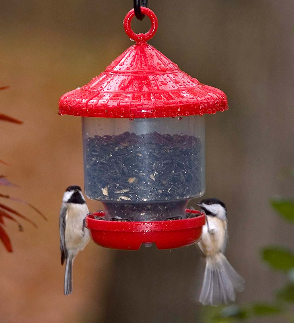 Clinger Hanging Bird Feeder