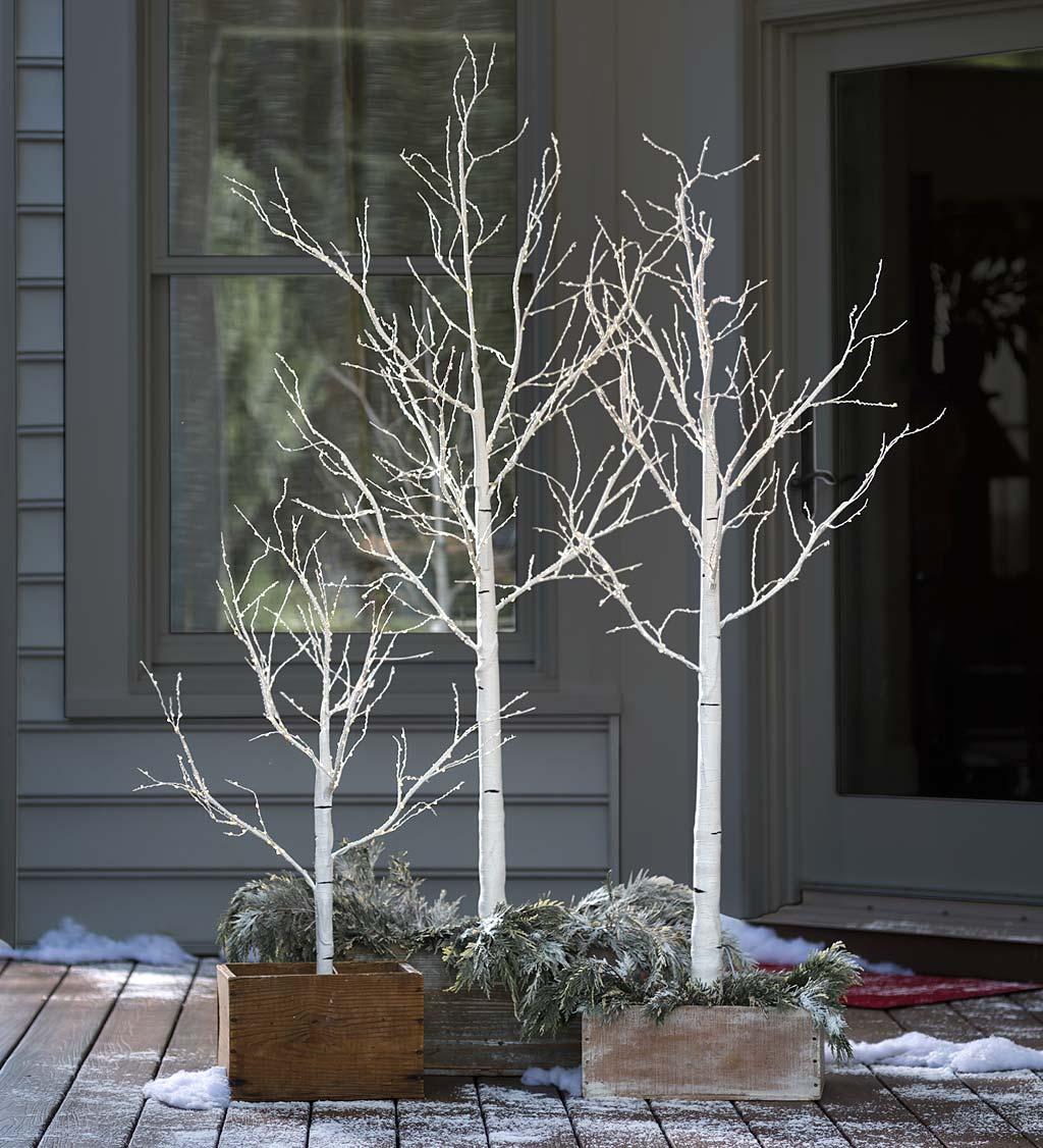 Indoor/Outdoor Birch Tree with Micro Lights