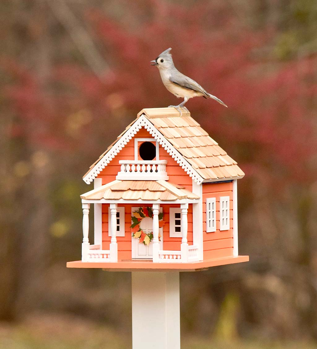 Autumn Daze Wooden Birdhouse and Pedestal Pole Set