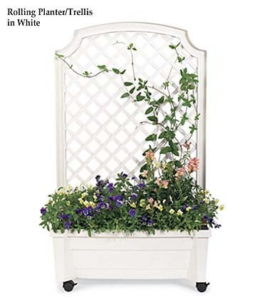 Planter With Trellis And Self-Watering Reservoir
