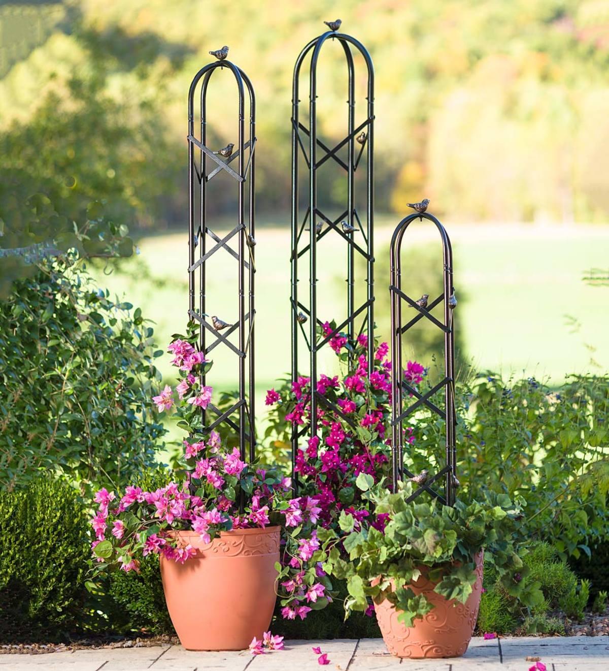 Metal Garden Obelisk Trellis With Bird Accents Plowhearth