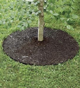 "Permanent Mulch Tree Ring, 24""dia."