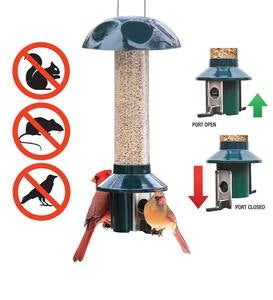 PestOff Bird Feeder For Peanuts, Dried Meal Worms, Suet And Wild Bird Nuggets