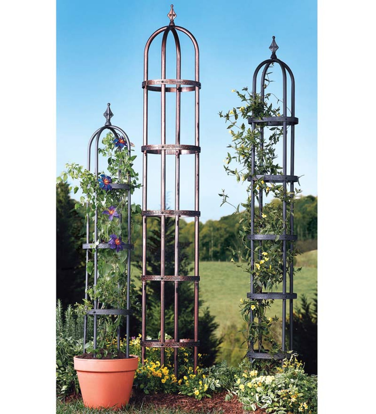 Powder-Coated Steel Garden Obelisks And Basket Planter