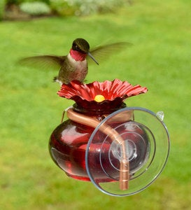 Window Watch Hummingbird Feeder