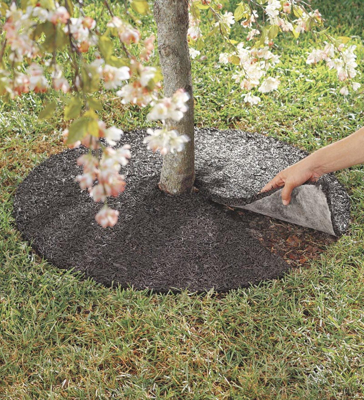 Perma Mulch Recycled Rubber Tree Ring