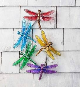 Watercolor Multi Dragonfly Glass Wall Art