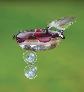 Window-Mount Hummingbird Feeder