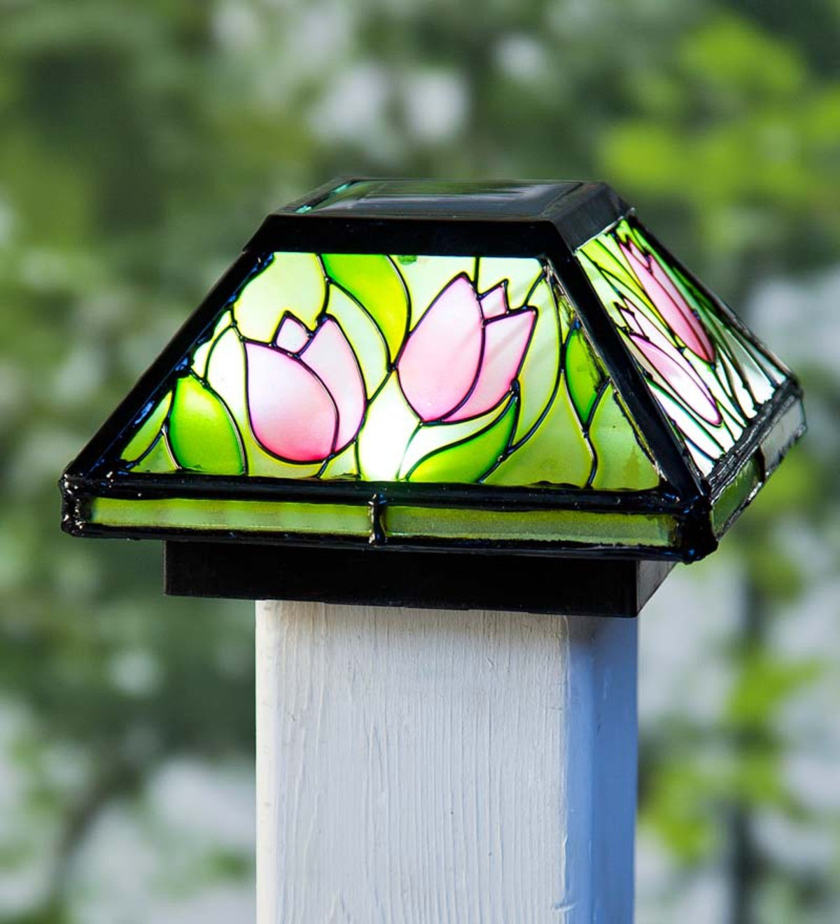 Tulip Glass Solar Post Cap Light