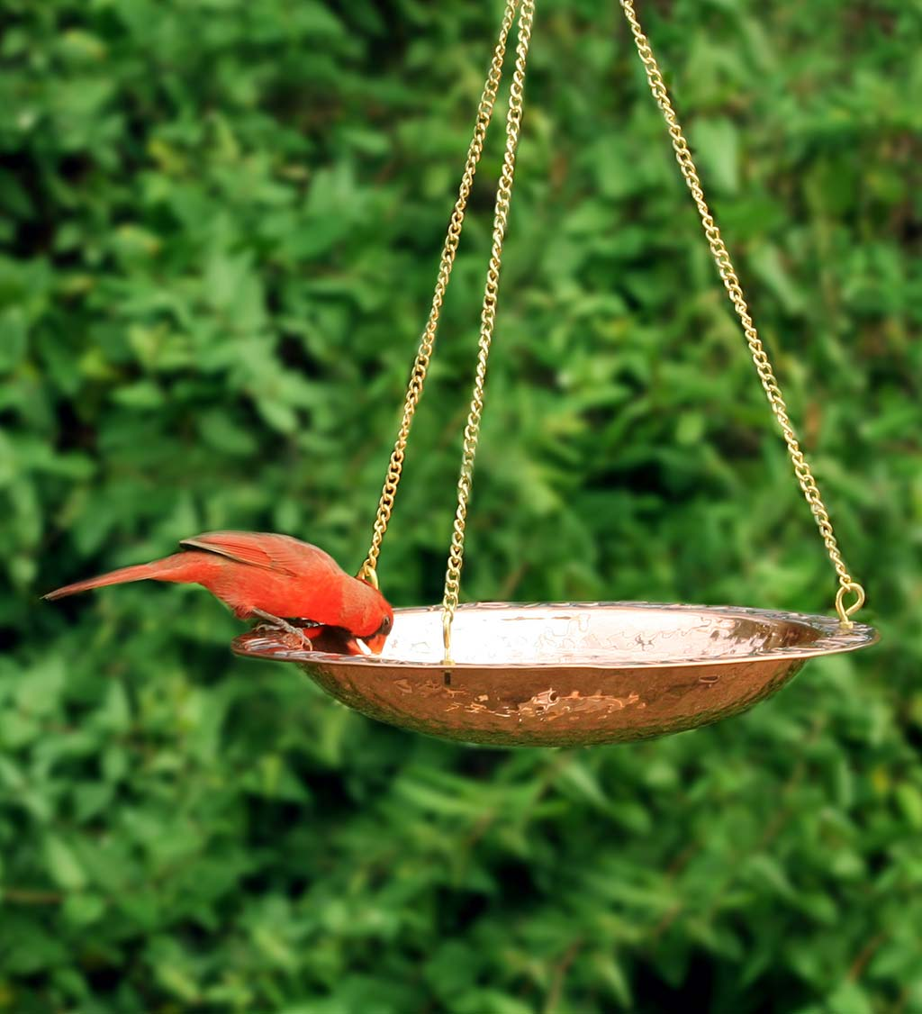 "Pure Copper Hanging Birdbath on 17"" Long Brass Chain with Hook"