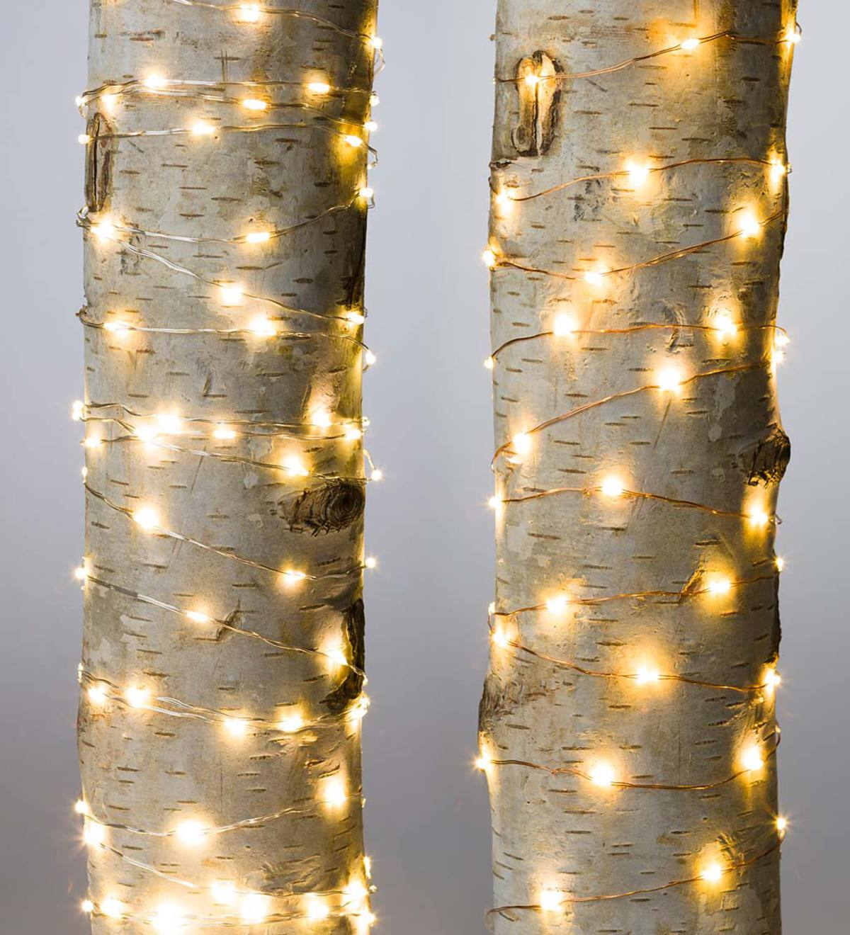 Firefly String Lights, 240 Warm White LEDs on Bendable Wire, Electric, 40'L