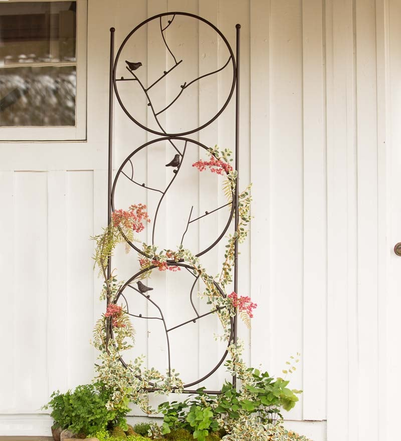 Circle Of Birds Trio Garden Trellis