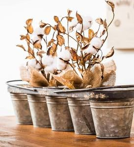 Galvanized Planters with Carrying Rack, Set of 5