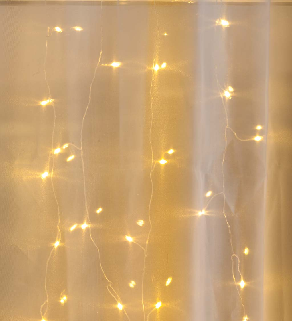 "Electric Micro Curtain Lights on Silver Wire, 160 Lights, 39""L"
