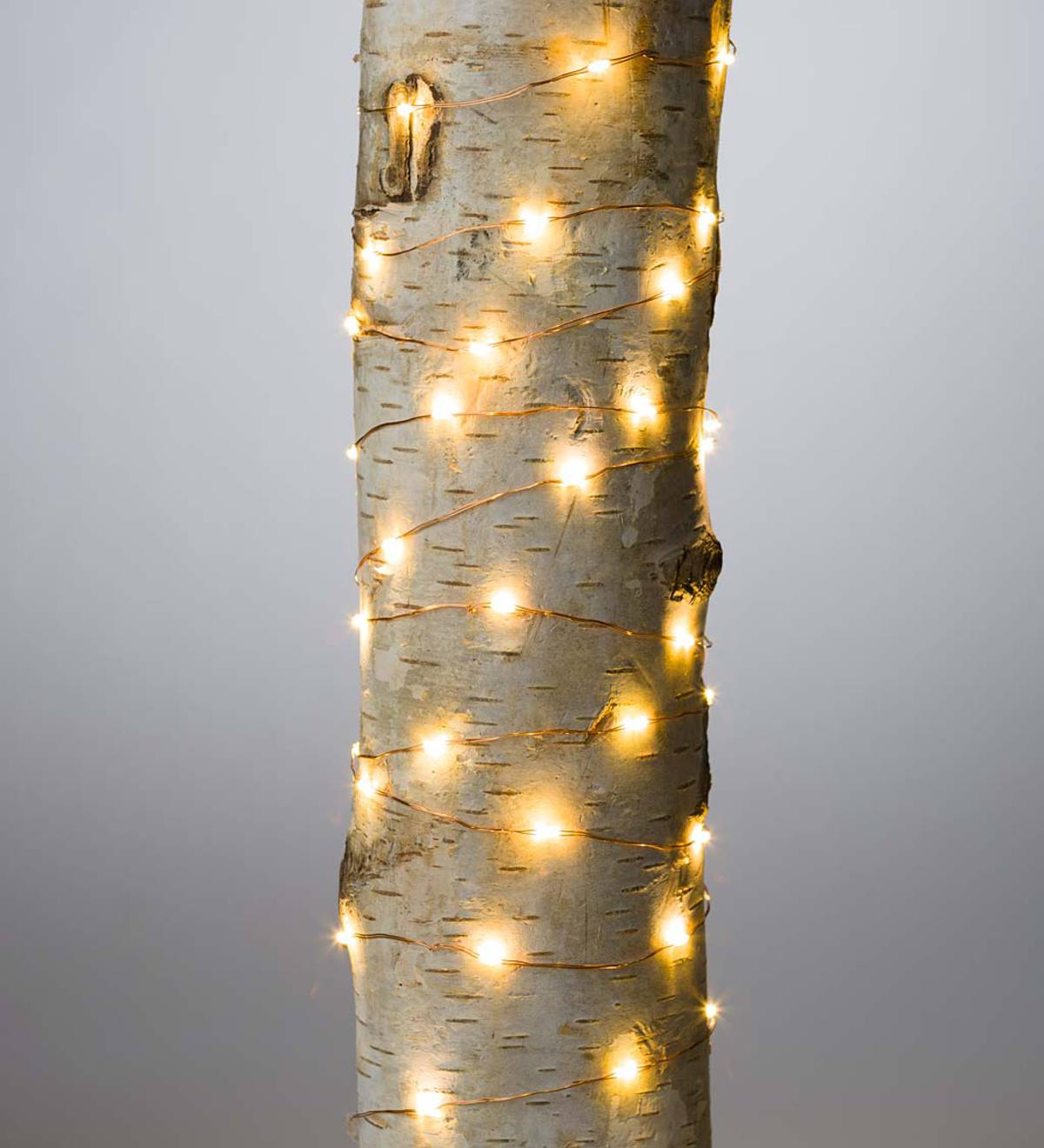 Firefly String Lights 240 Warm White Leds On Bendable Wire Electric 40