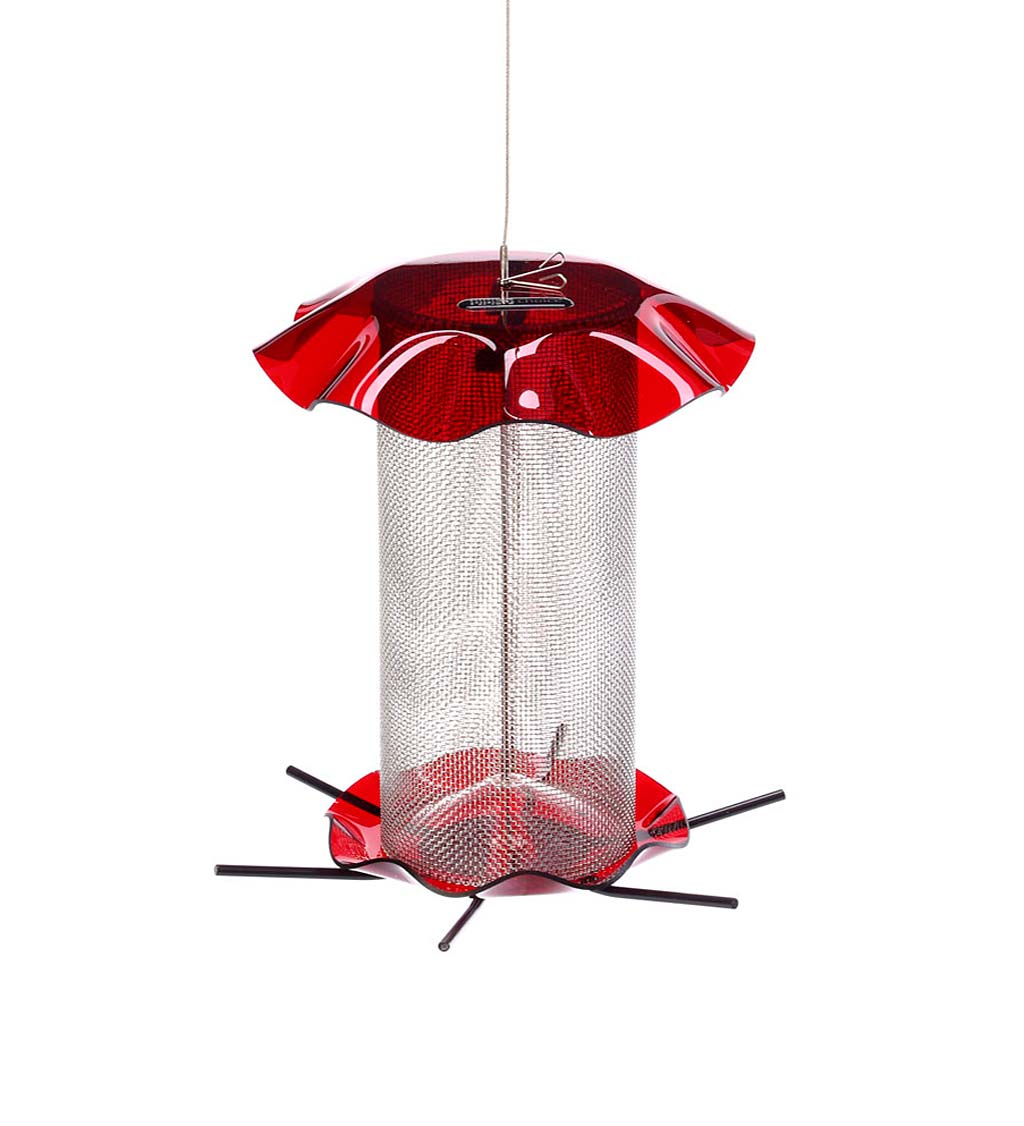 Acrylic and Stainless Steel Hanging Nyjer Bird Feeder swatch image
