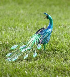 Peacock with Feathers Down Metal Garden Accent