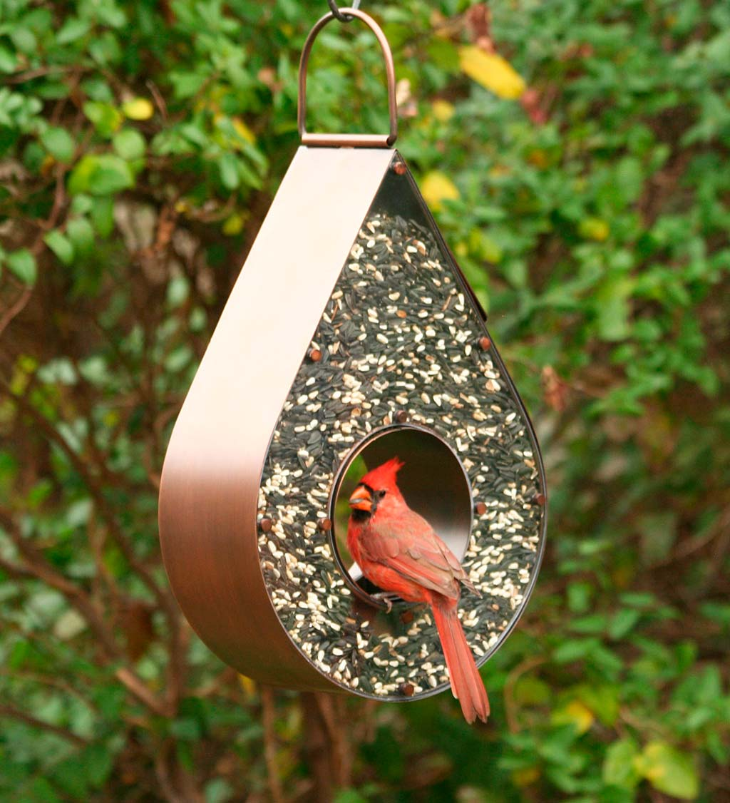 Copper Tear Drop Bird Feeder