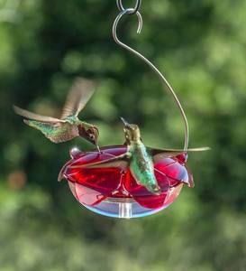 Hanging 5-Ounce Hummingbird Feeder