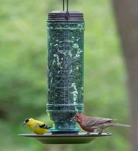 Vintage-Style Glass and Metal Hanging Songbird Feeder