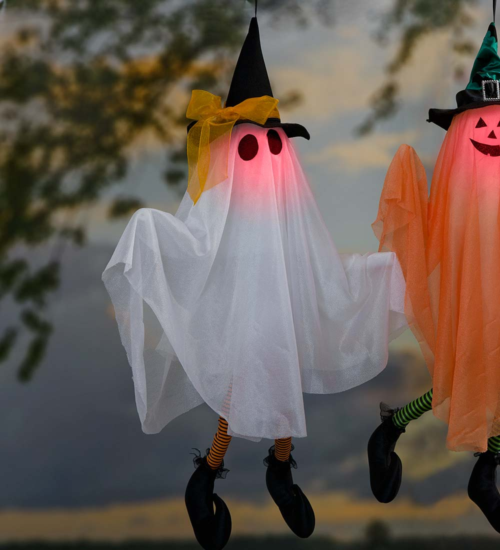 Motion-Activated Animated Halloween Ghost